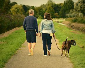 Dog Walking Australia