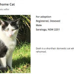 Verified Listing Pet rehoming