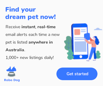 Robo Dog - Pet finder in Australia