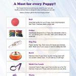 Puppy Starter Pack Flyer